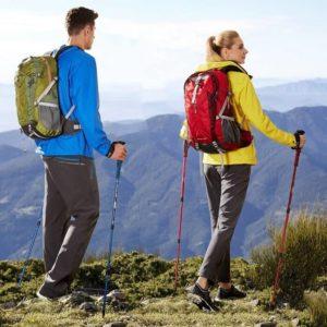 Скандинавская ходьба с палками, техника ходьбы для начинающих